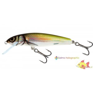 SALMO MINNOW 5F HOLO BLEAK
